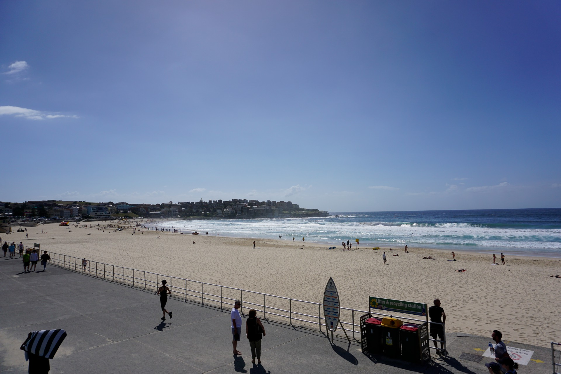 Bondi Beach and Surrounds Image 3