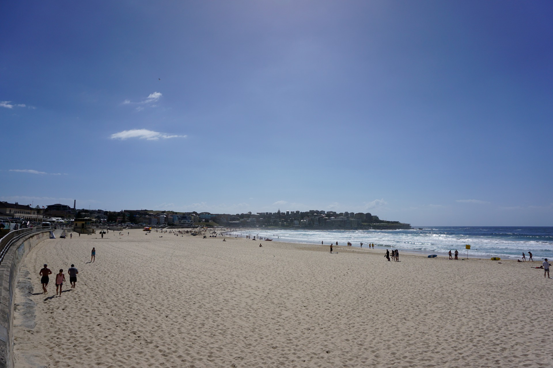 Bondi Beach and Surrounds Image 4