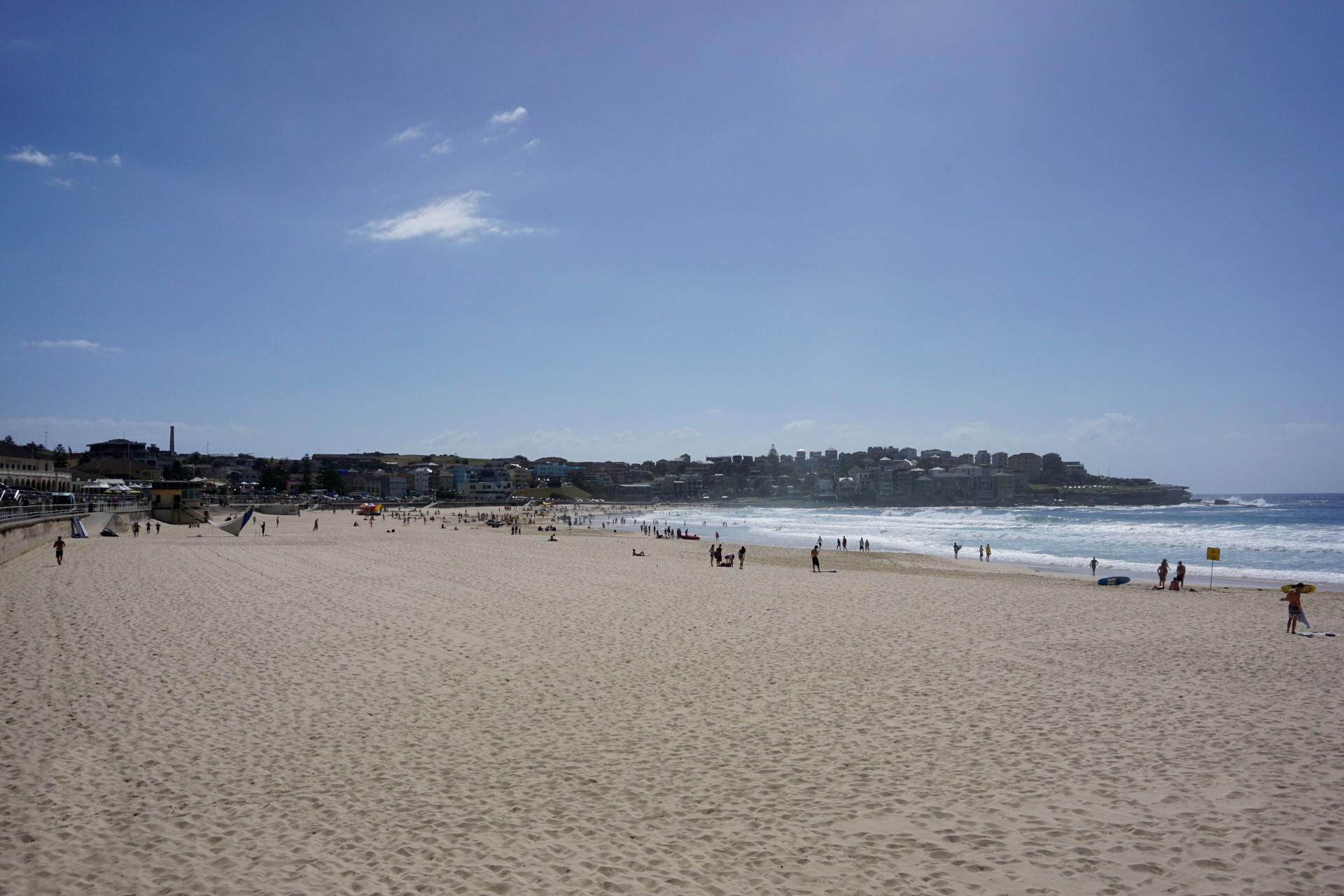 Bondi Beach and Surrounds Image 7
