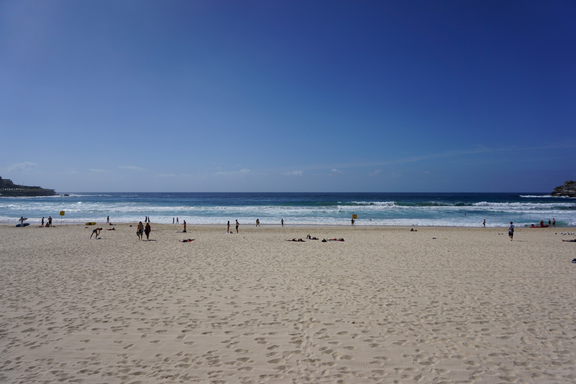 Bondi Beach and Surrounds Image 8