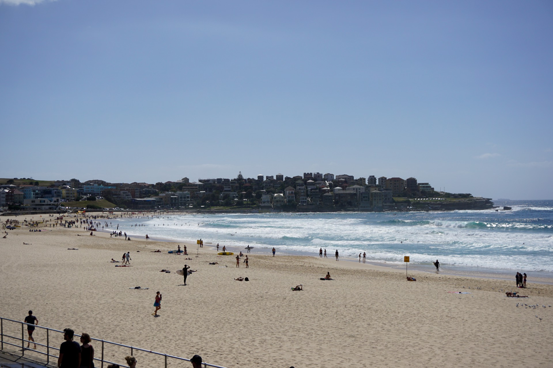 Bondi Beach and Surrounds Image 17