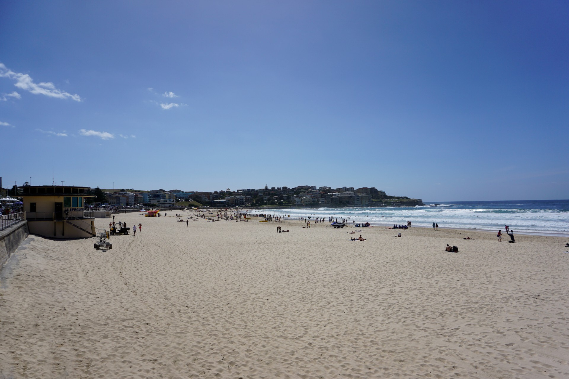 Bondi Beach and Surrounds Image 18