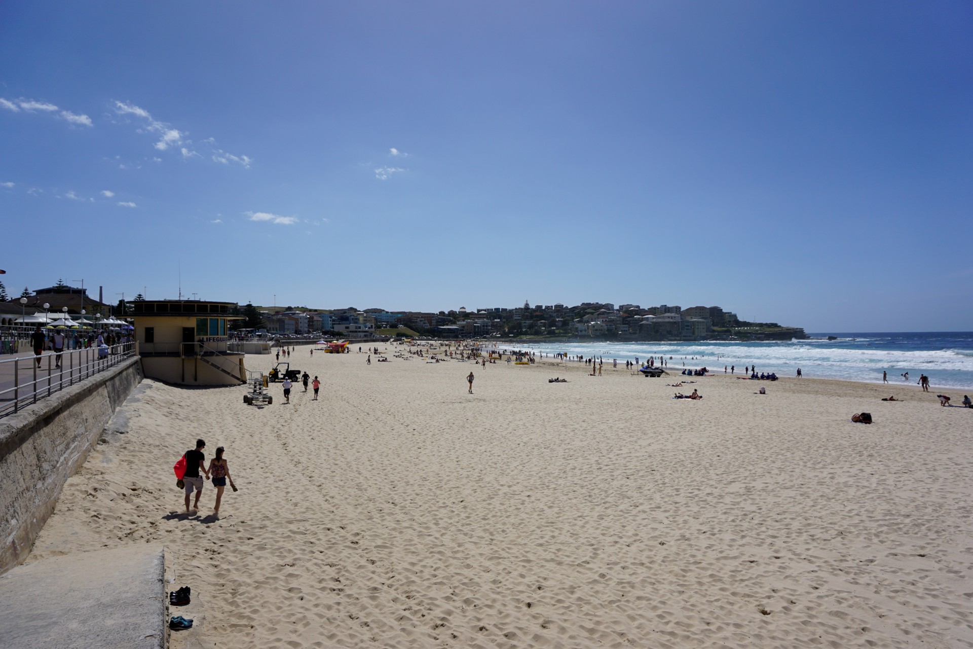 Bondi Beach and Surrounds Image 19