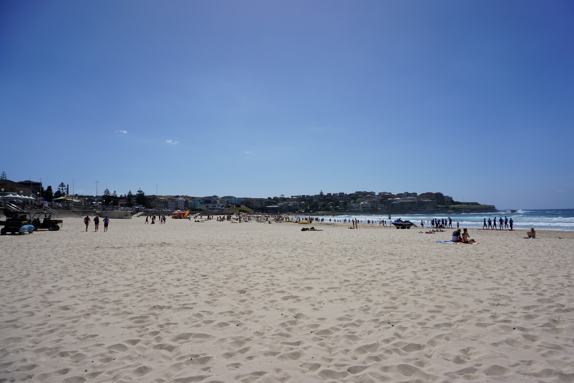 Bondi Beach and Surrounds Image 20