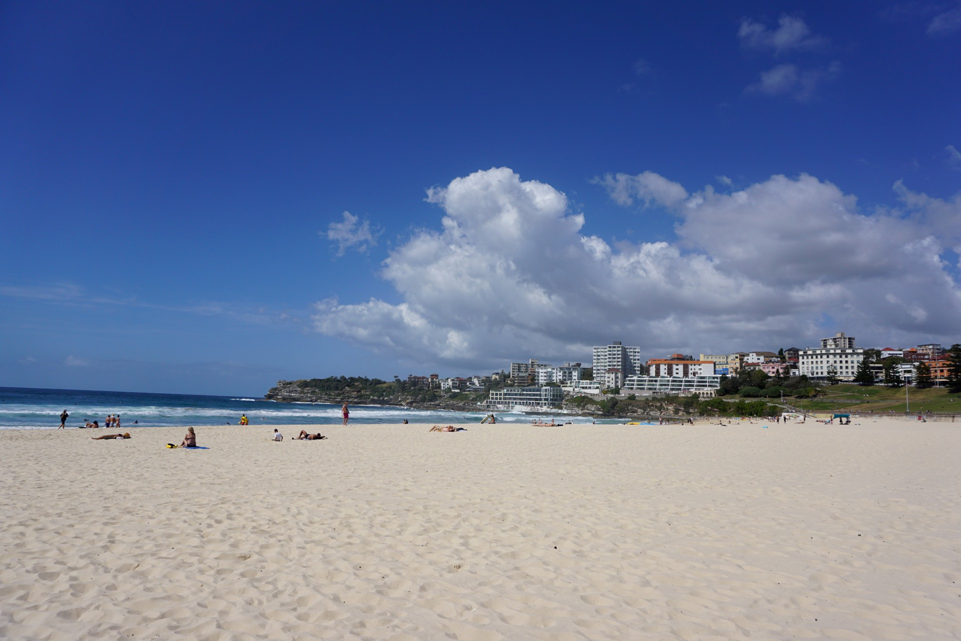 Bondi Beach and Surrounds Image 21