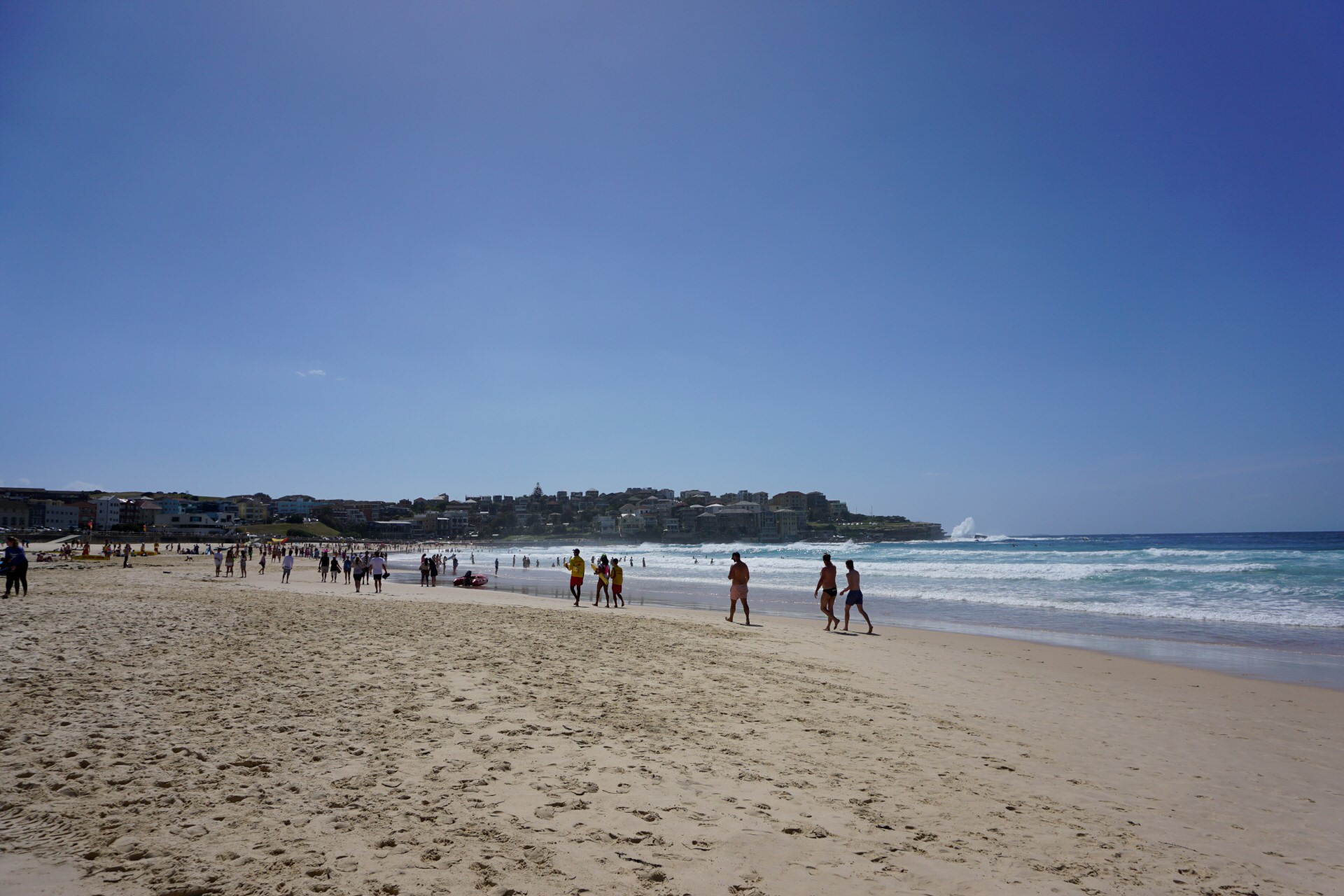 Bondi Beach and Surrounds Image 22