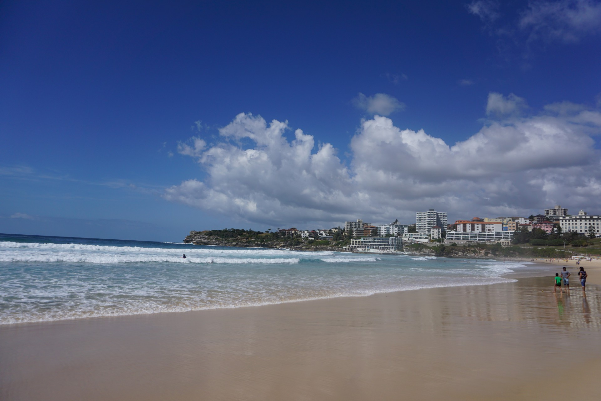 Bondi Beach and Surrounds Image 26