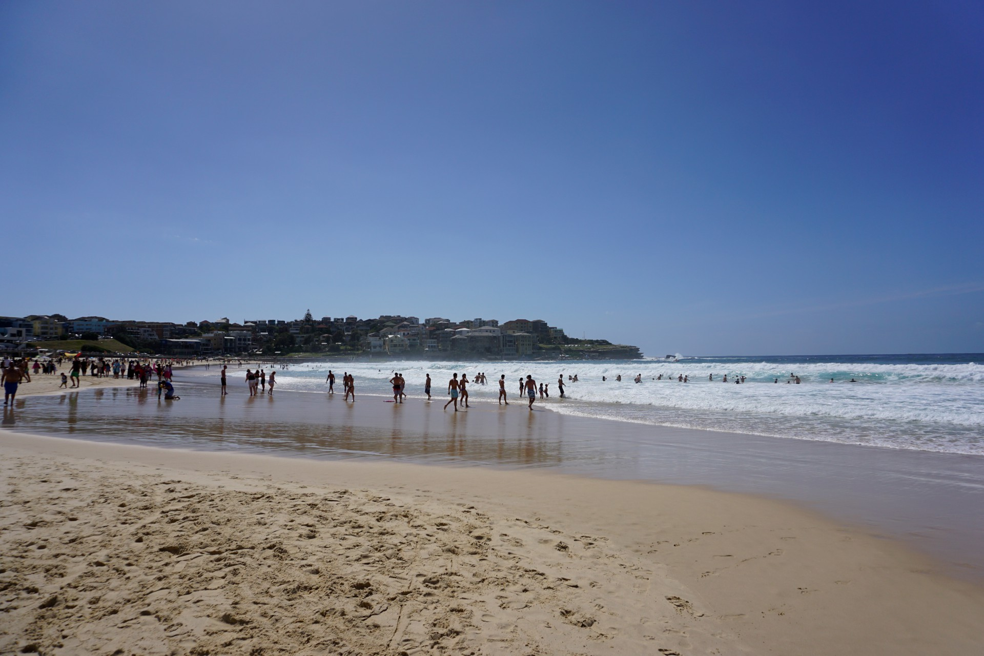 Bondi Beach and Surrounds Image 29