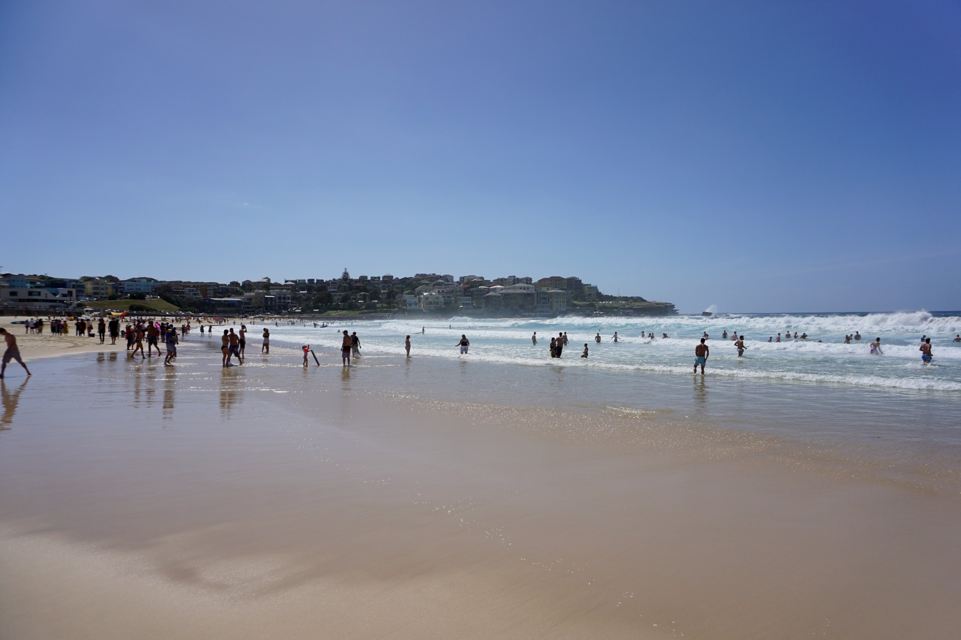 Bondi Beach and Surrounds Image 30