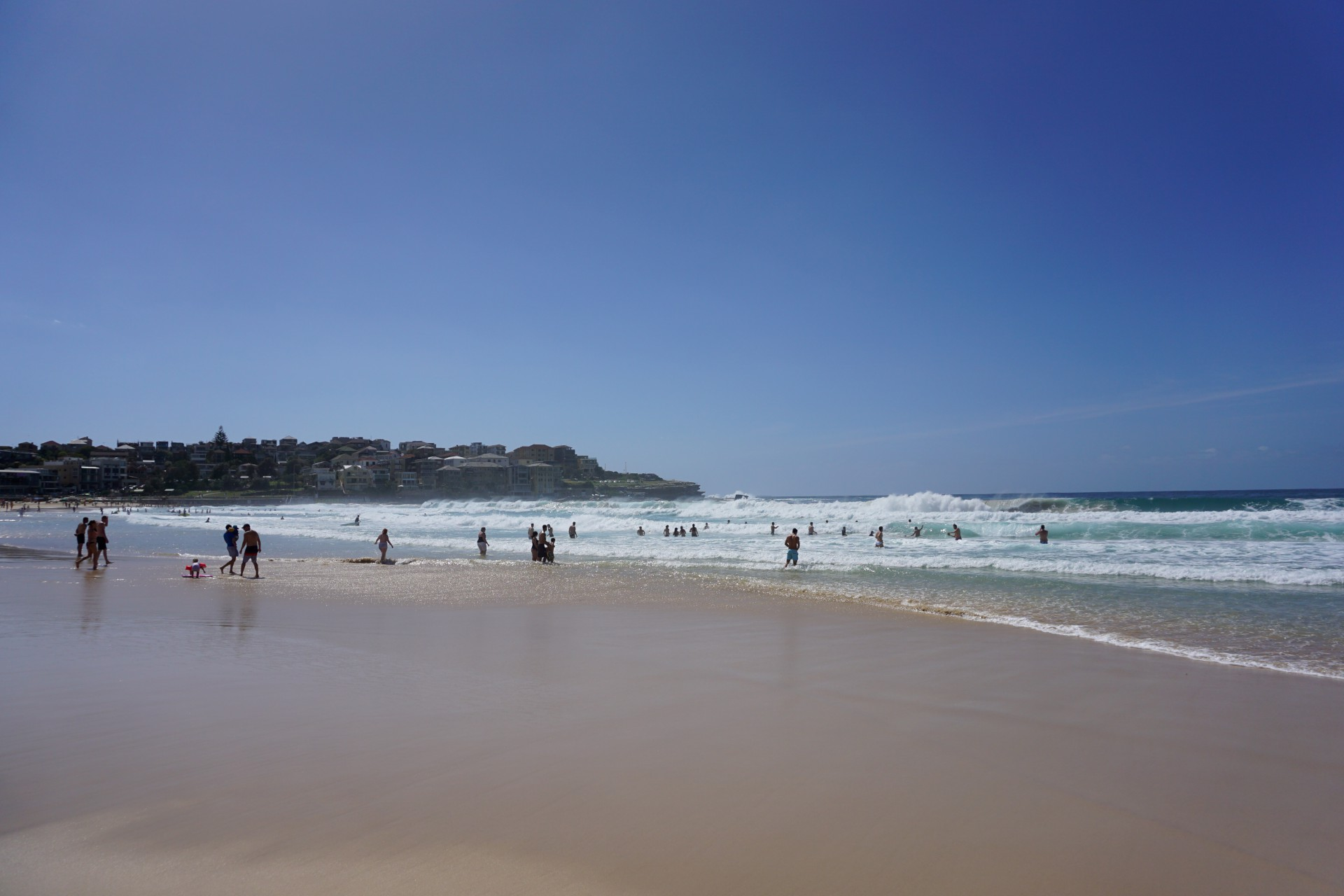 Bondi Beach and Surrounds Image 31