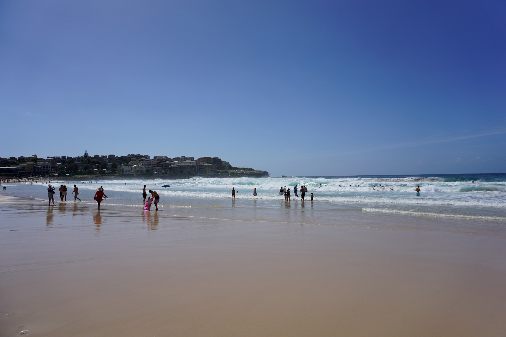 Bondi Beach and Surrounds Image 32