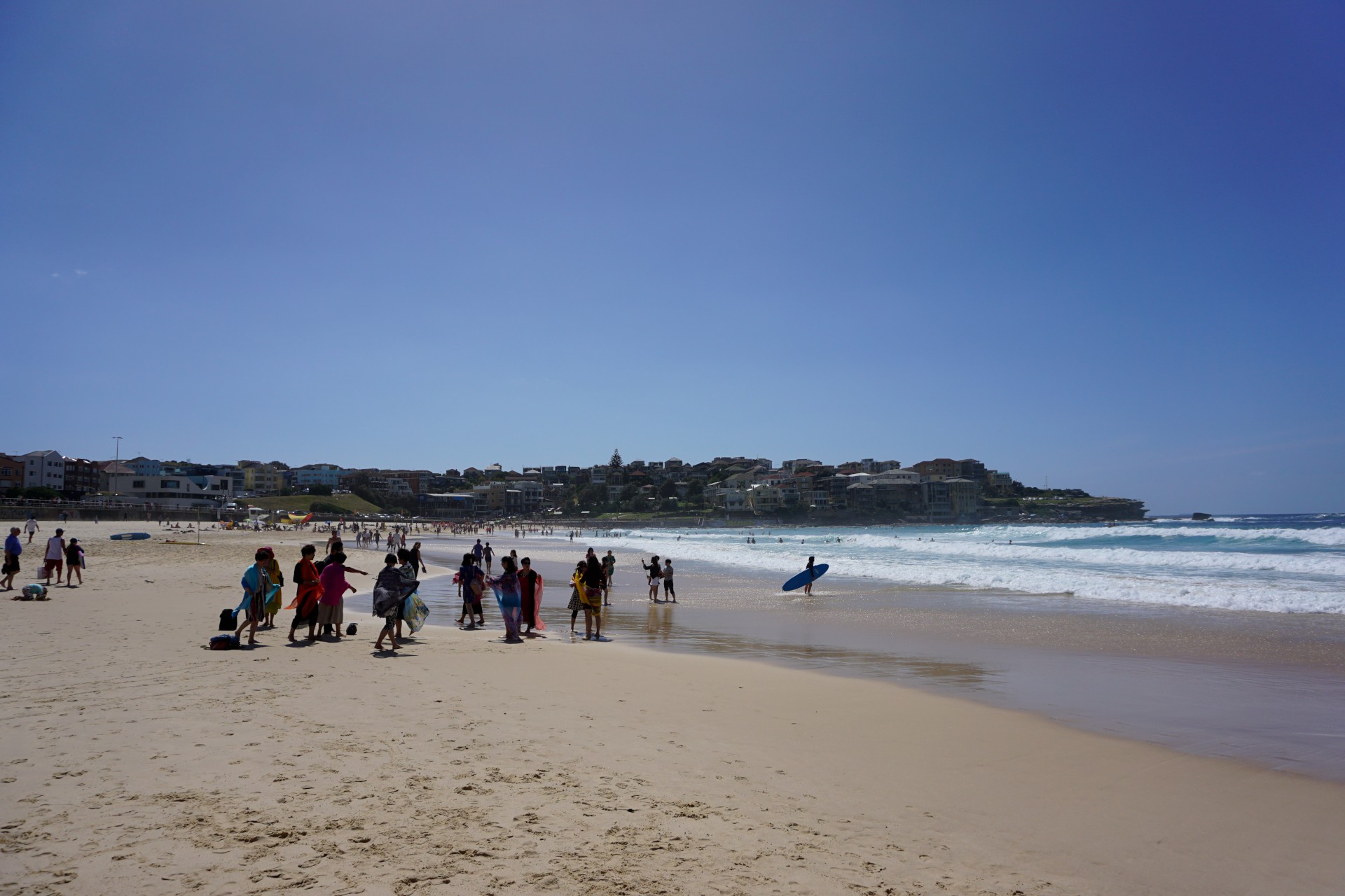 Bondi Beach and Surrounds Image 34