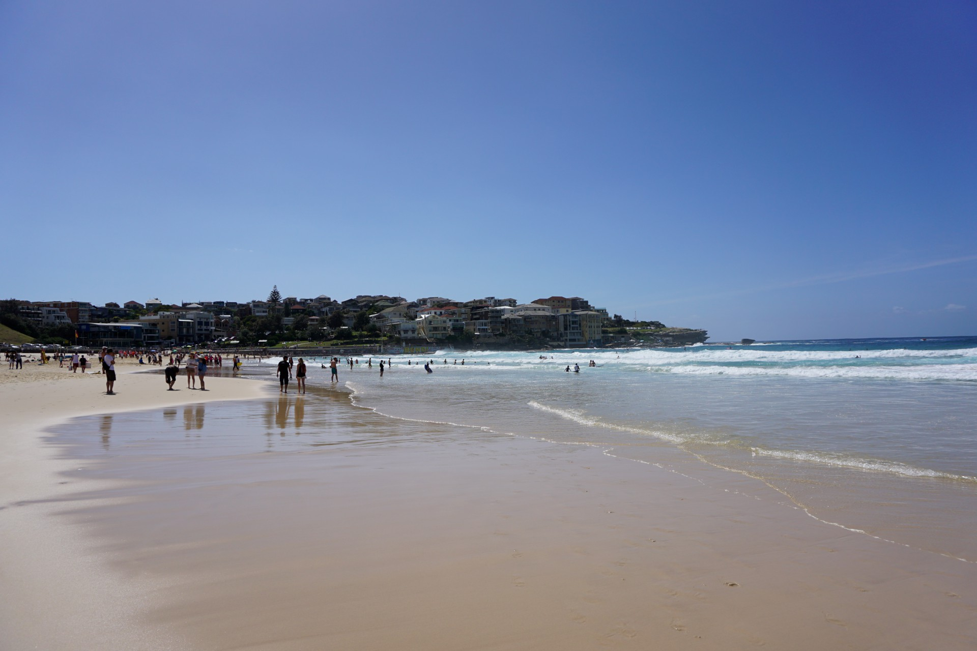 Bondi Beach and Surrounds Image 35