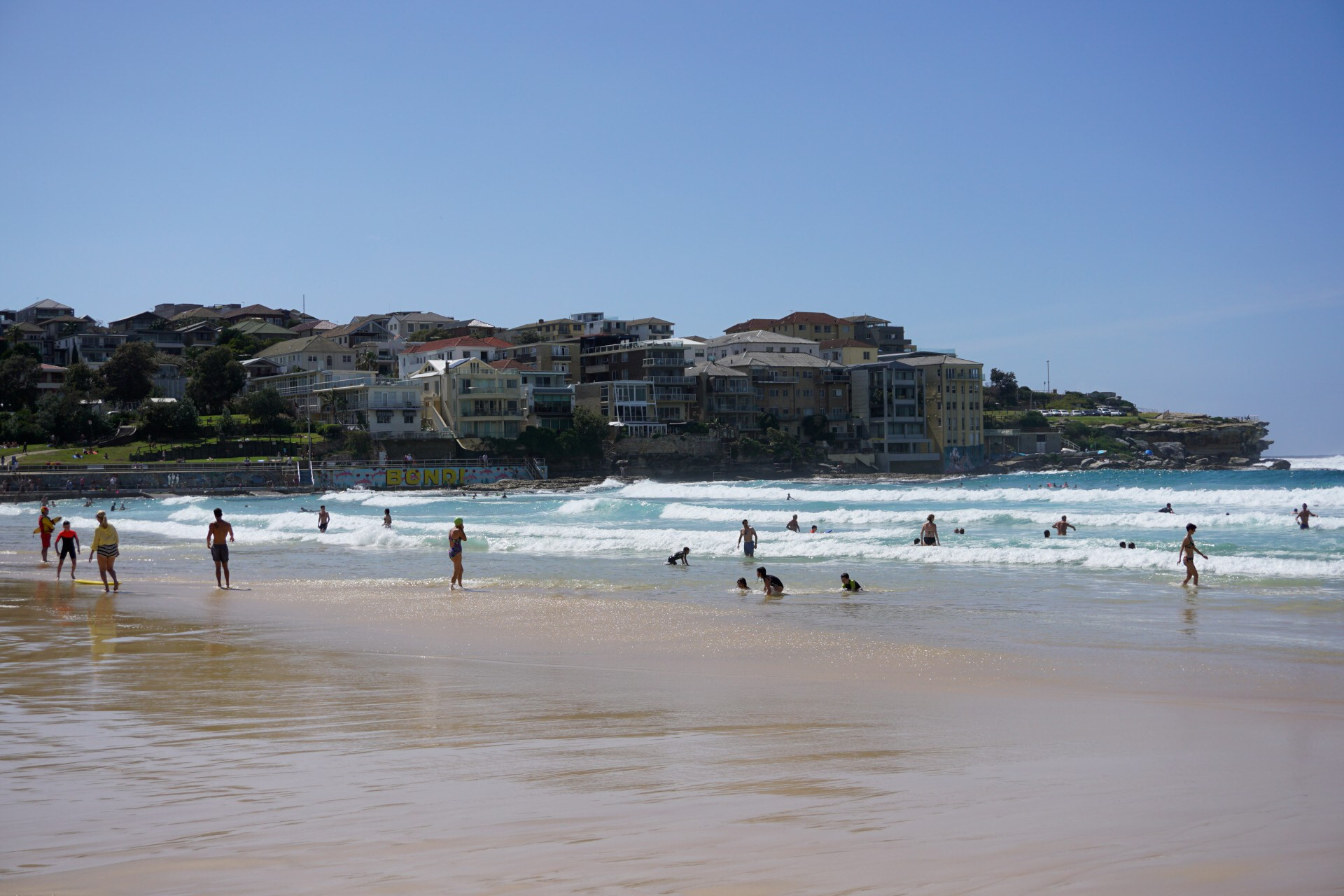 Bondi Beach and Surrounds Image 36