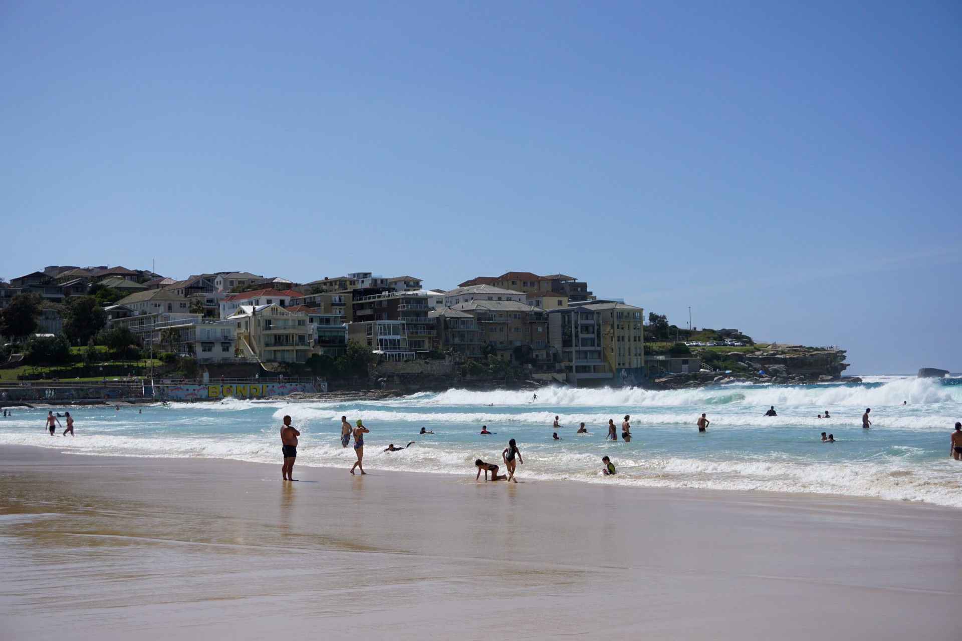Bondi Beach and Surrounds Image 37