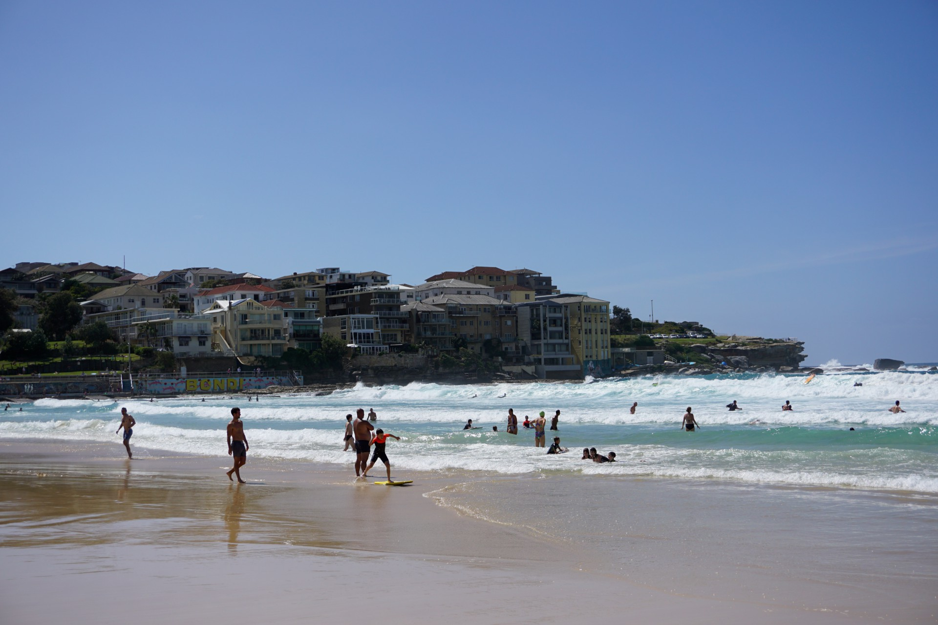 Bondi Beach and Surrounds Image 38