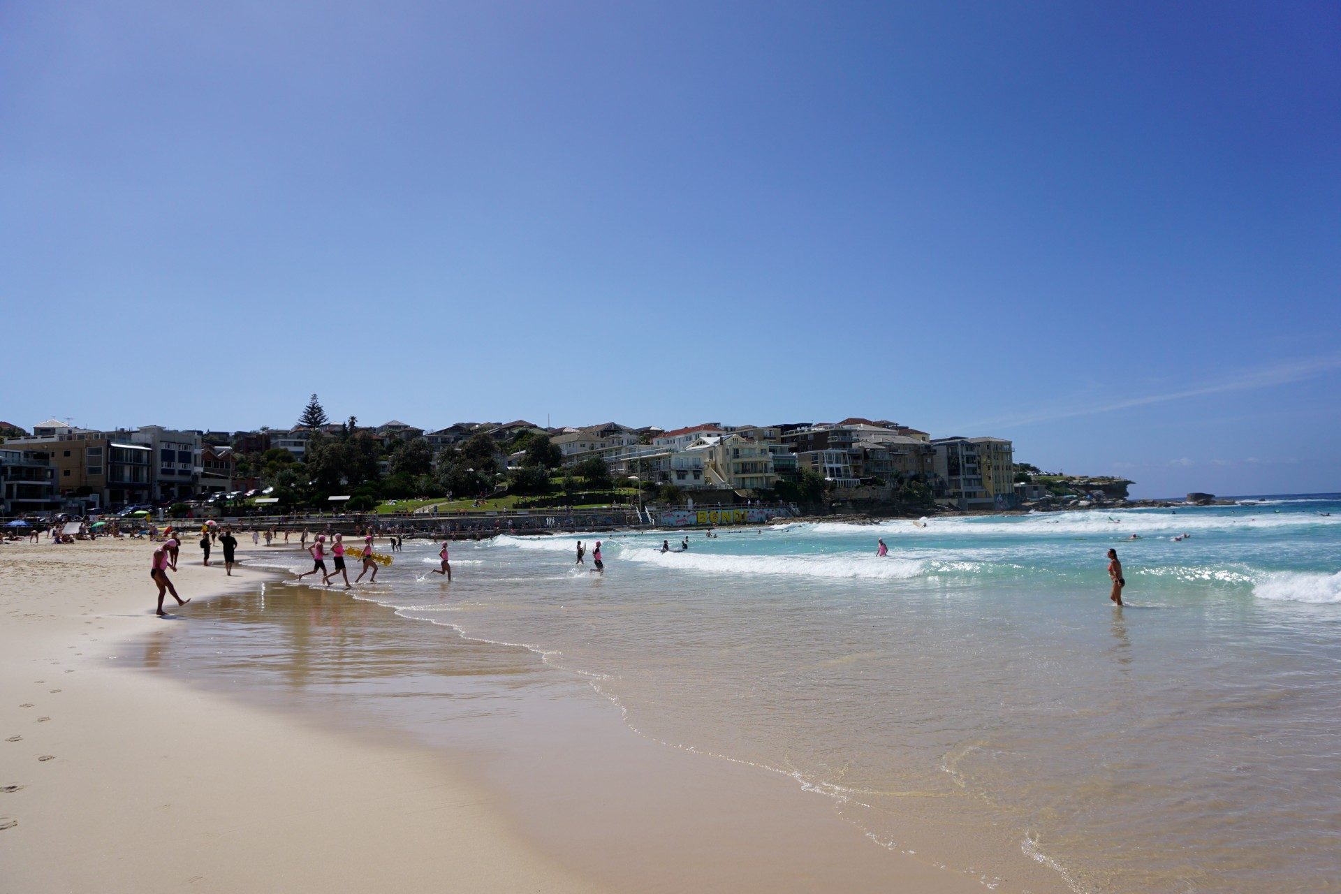 Bondi Beach and Surrounds Image 41