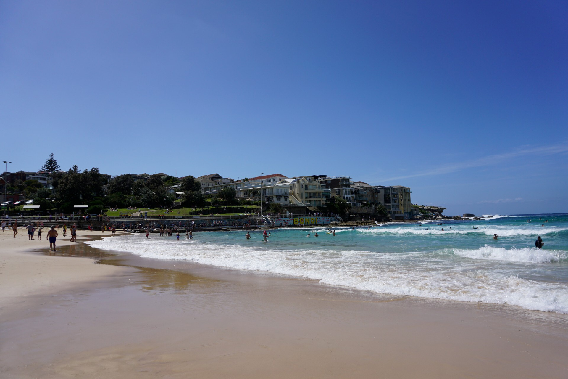 Bondi Beach and Surrounds Image 42
