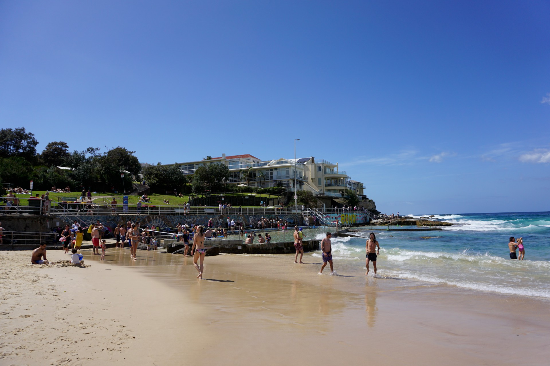 Bondi Beach and Surrounds Image 46
