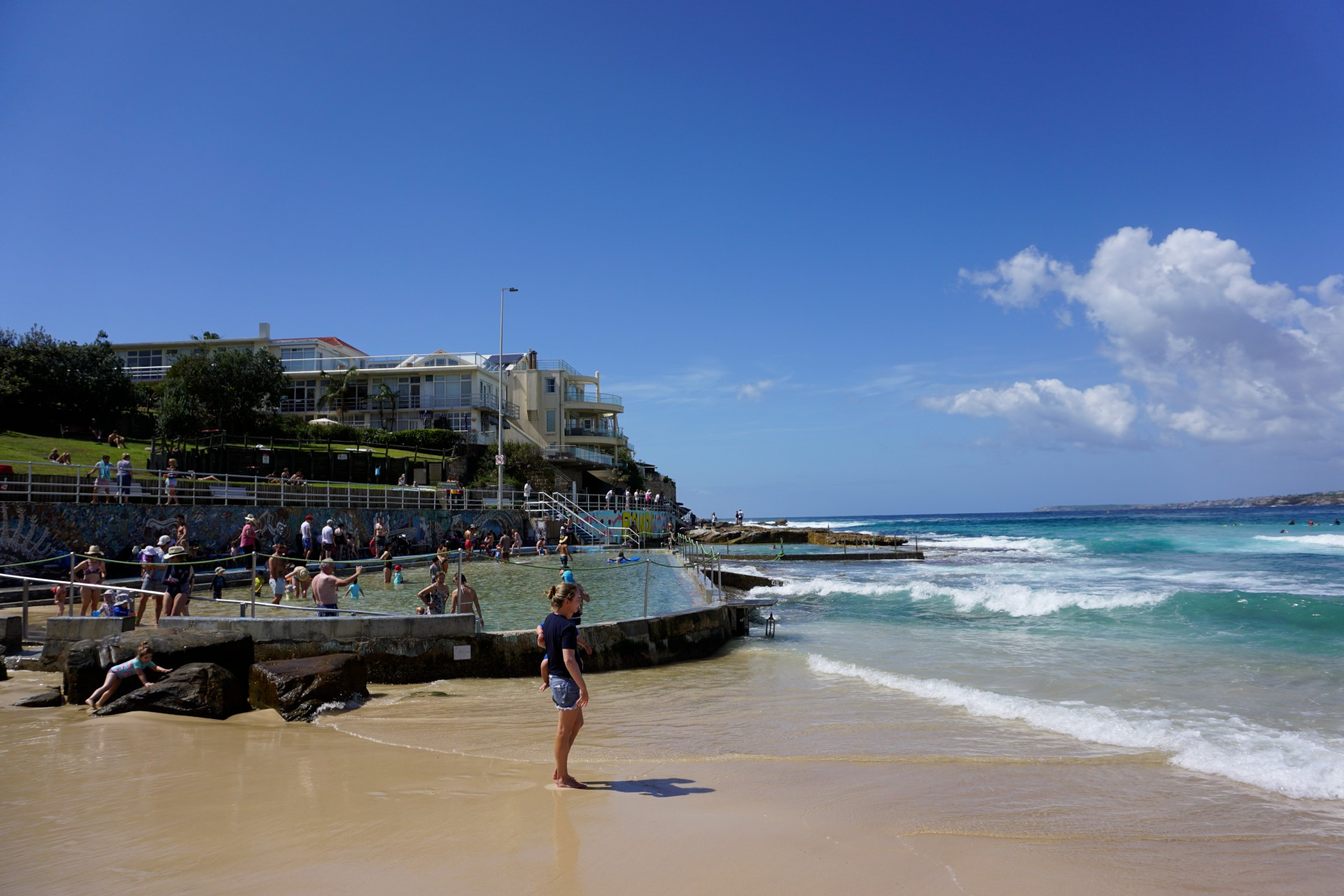Bondi Beach and Surrounds Image 47