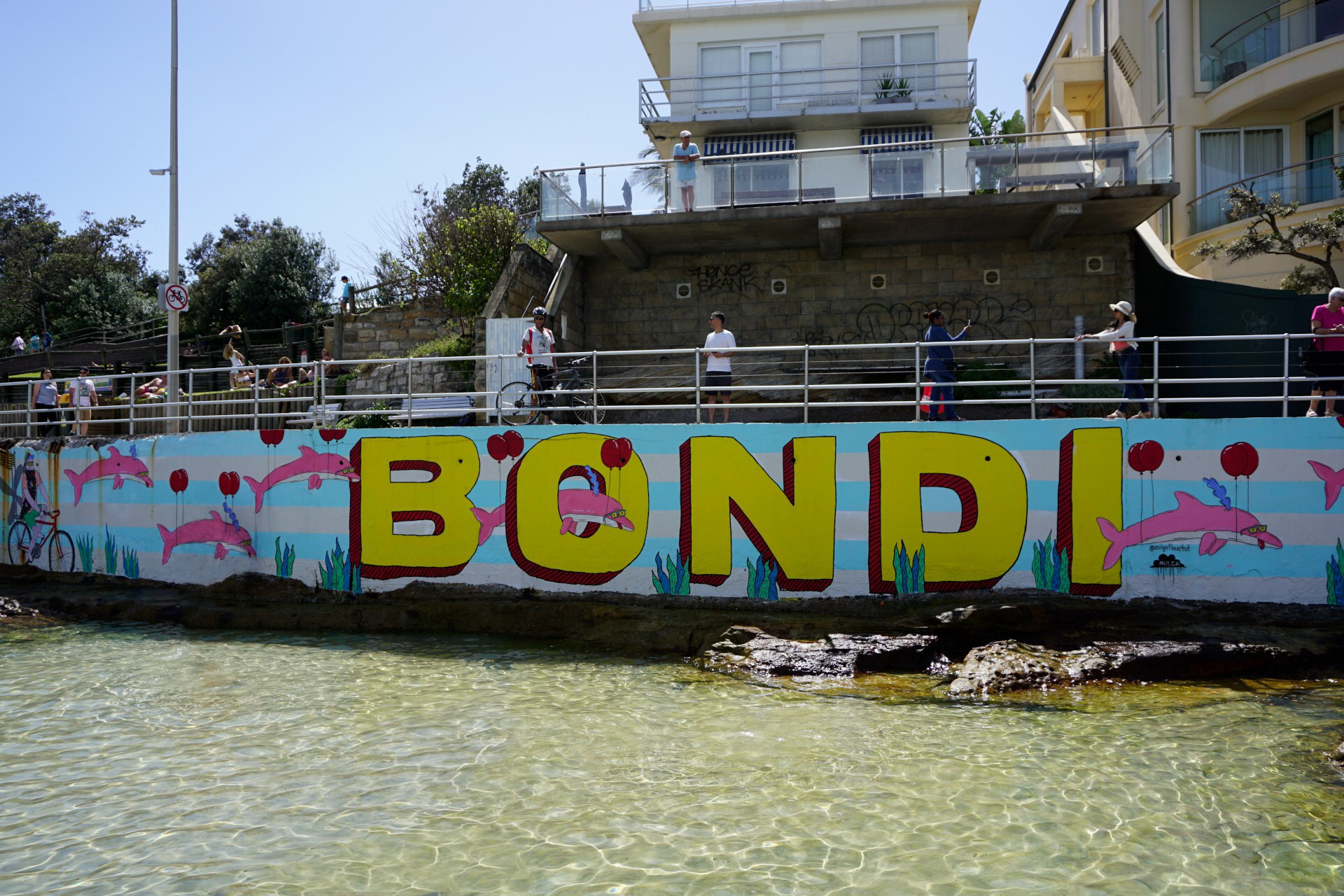 Bondi Beach and Surrounds Image 48