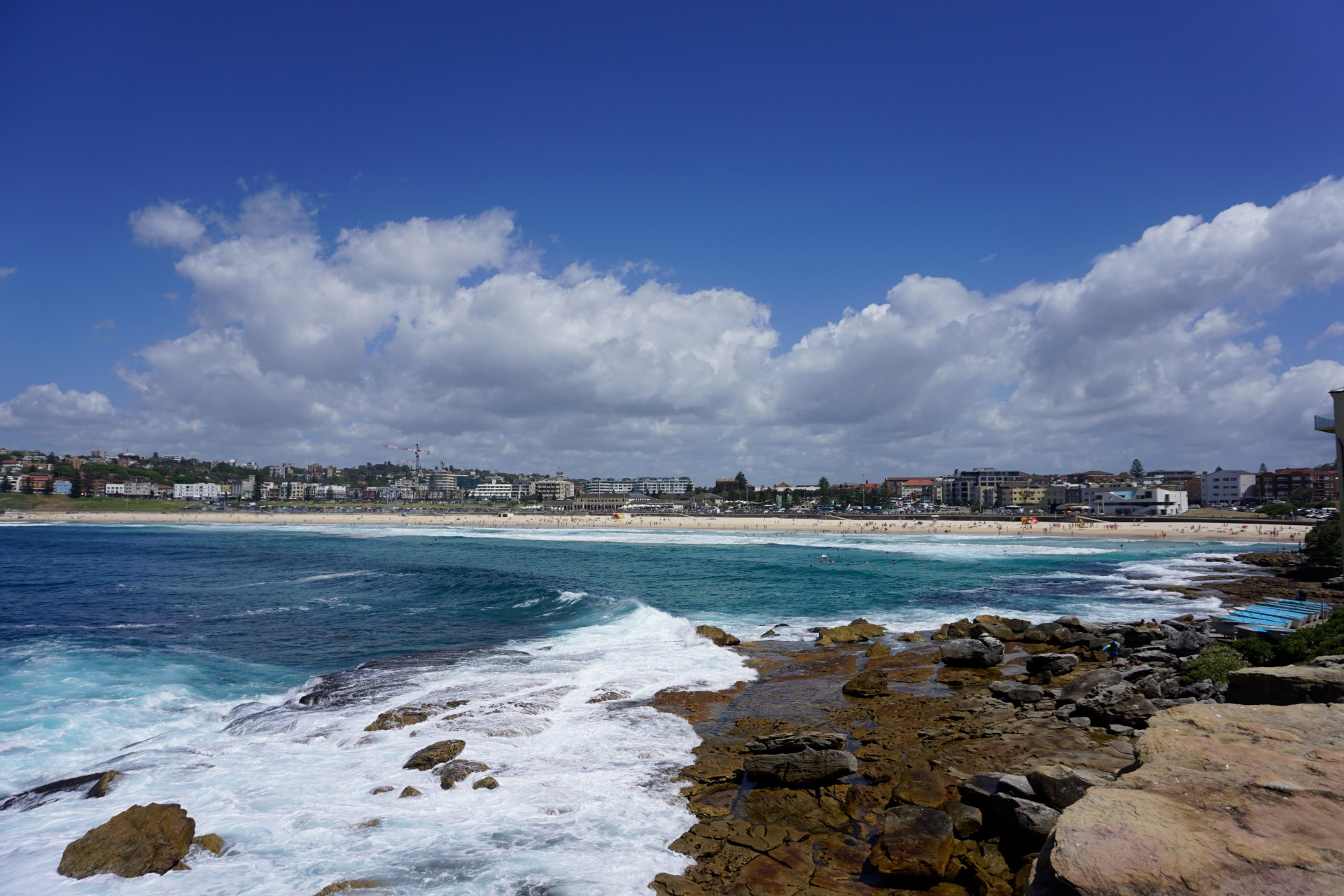 Bondi Beach and Surrounds Image 49