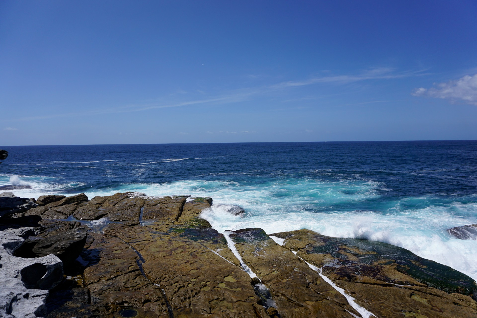Bondi Beach and Surrounds Image 50